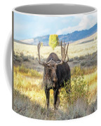 Bull Moose Coffee Mug by Michael Chatt