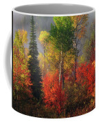 Color And Light Coffee Mug by Leland D Howard