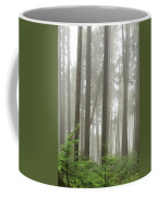 Foggy Forest Coffee Mug by Karen Zuk Rosenblatt