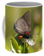 Great Purple Hairstreak Coffee Mug
