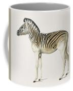 Mountain Zebra  Dauw  Illustrated By Charles Dessalines D' Orbigny  1806-1876  Coffee Mug