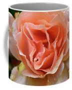 Salmon Pink Rose Coffee Mug