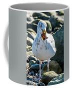 Seagull With Sail Coffee Mug