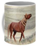 Wild Stallion Coffee Mug by Ronnie and Frances Howard