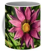 Nice Gazania Coffee Mug
