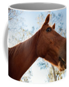 Horse In A Countryside Coffee Mug