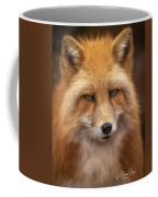 Russian Red Fox Coffee Mug