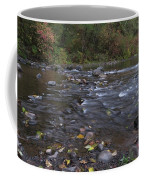 Long Exposure Photographs Of Rolling River With Fall Foliage Coffee Mug