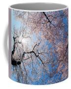 Low Angle View Of Cherry Blossom Trees Coffee Mug