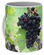 Purple Grape Bunches 17 Coffee Mug