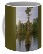 Tennesse Cypress In Wetland  Coffee Mug