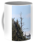 Ruby Beach Sunshine Coffee Mug