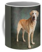 Portrait Of A Labrador Mixed Dog Coffee Mug
