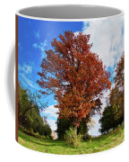 Sagamore Hill Coffee Mug