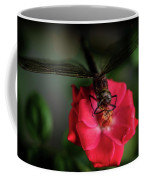 Dragonfly On A Flower Of A Red Rose. Macro Photo Coffee Mug