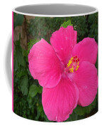 Bright Pink Hibiscus Coffee Mug