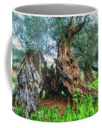 Old Olive Tree Coffee Mug