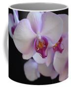 7195-orchids Coffee Mug
