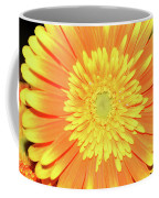 7289-yelow Gerber Coffee Mug