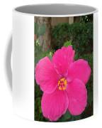 Bright Pink Hibiscus Coffee Mug