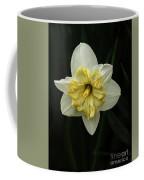 A Beautiful Narcissus Coffee Mug