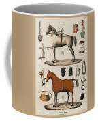 A Chromolithograph Of Horses With Antique Horseback Riding Equipments   1890  Coffee Mug