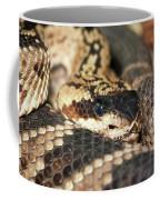 A Close Up Of A Mojave Rattlesnake Coffee Mug