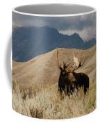 A Really Big Moose Coffee Mug