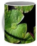 A Red Leaf Among The Water Lily Pads Coffee Mug