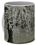 A Single Cherry Tree In Bloom Coffee Mug