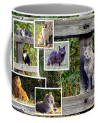 A Variety Of Cats Coffee Mug