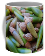 Acorn Harvest Coffee Mug