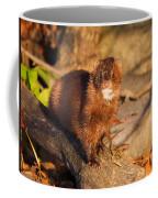 Adorable Mink Coffee Mug
