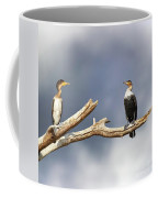 Adult And Juvenile Cormorants At Lake Naivasha Coffee Mug