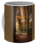 Afternoon Light In Fall Colors Of New England Coffee Mug