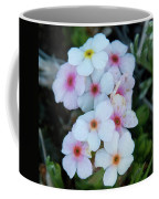 Alpine Rockjasmine Up Close Coffee Mug