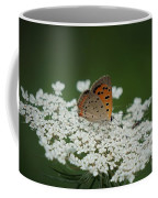 American Copper On Queen Anne's Lace Coffee Mug
