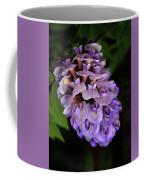 Amethyst Falls Coffee Mug