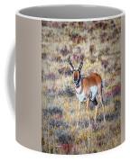 Antelope Buck 2 Coffee Mug