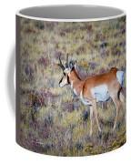 Antelope Buck Coffee Mug