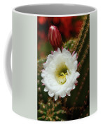 Argentine Giant White Flower And Red Bud Coffee Mug