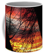 Arizona Sunset Through Branches Coffee Mug