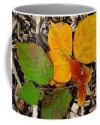 Assiniboine Forest Floor No.1 Coffee Mug