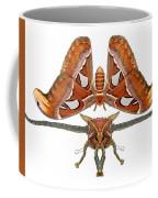 Atlas Moth5 Coffee Mug
