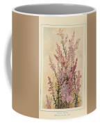 Australian Wild Flowers  8 Coffee Mug