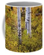 Autumn Contrasts Coffee Mug by John De Bord