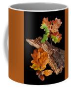 Autumn Oak Leaves And Acorns On Black Coffee Mug