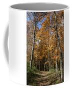 Autumn Pathway Coffee Mug by Dylan Punke