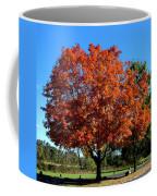 Autumnal Beauty Coffee Mug