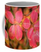 Autumnal Hues Coffee Mug